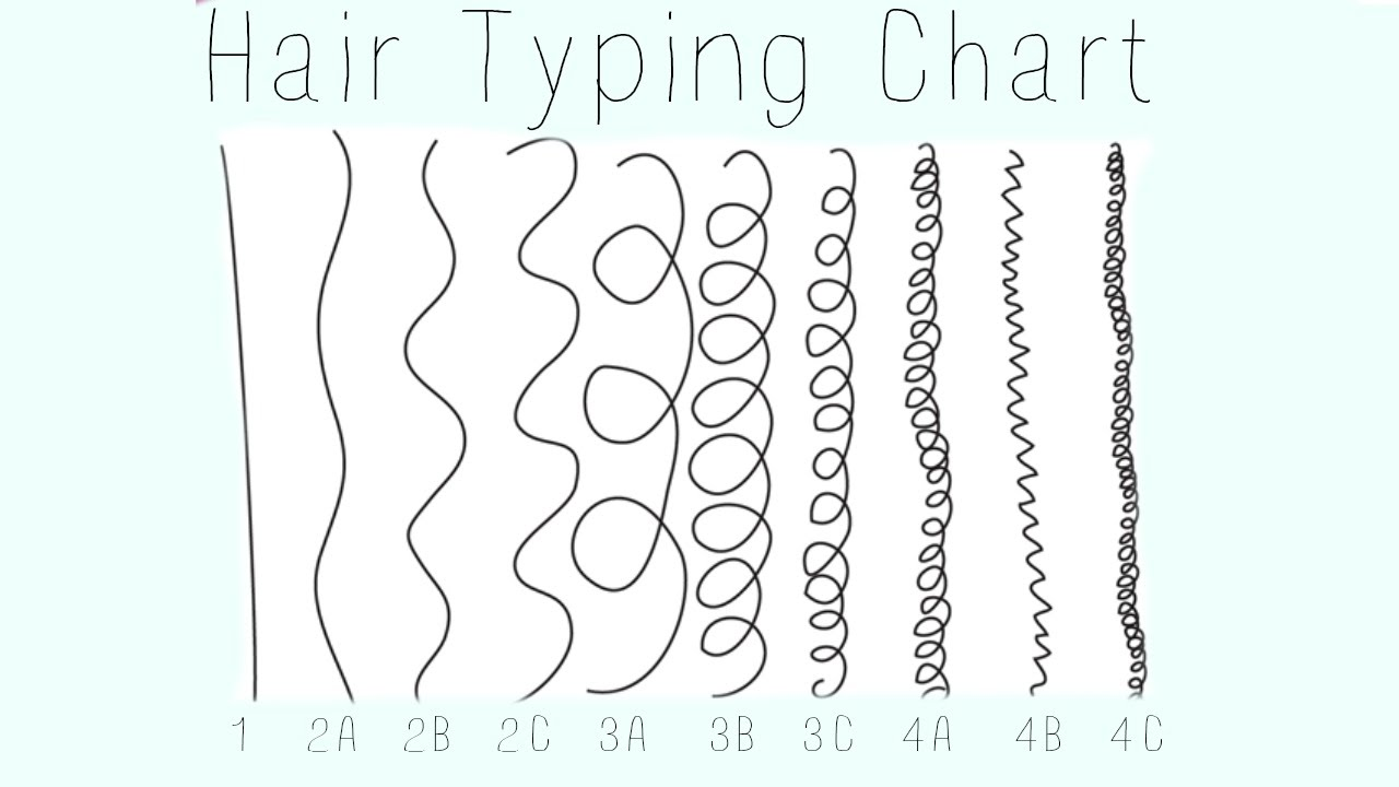 hair typing chart- 1 2 3 4