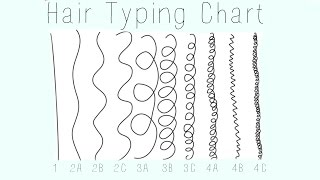 Hair Typing Chart- 1,2,3,4- A,B,C (Accurate)