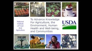 Building a Relationship with ARS to Enhance Your USDA SBIR Proposal