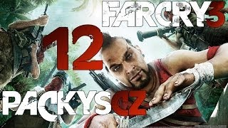 Far Cry 3 ►12◄ Let