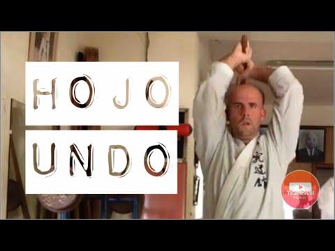 Hojo undō Okinawa Karate (strength and conditioning)