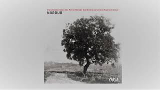 Sly & Robbie Meets Nils Petter Molvær - Nordub (Full Album)