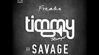 Timmy Trumpet Freaks (Radio Edit)