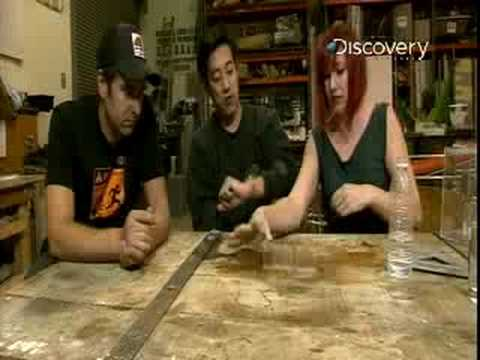 MythBusters - Drowning Cockroaches?