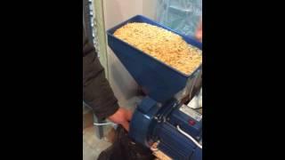 видео поможет купить зернодробилки цена