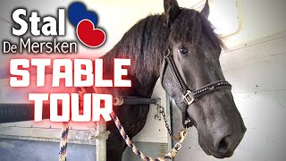 Stable tour at Stal de Mersken, and on tour with Ginny | Friesian Horses