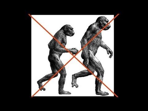 CARTA: The Upright Ape: Bipedalism and Human Origins -- Carol Ward: Early Hominin Body Form