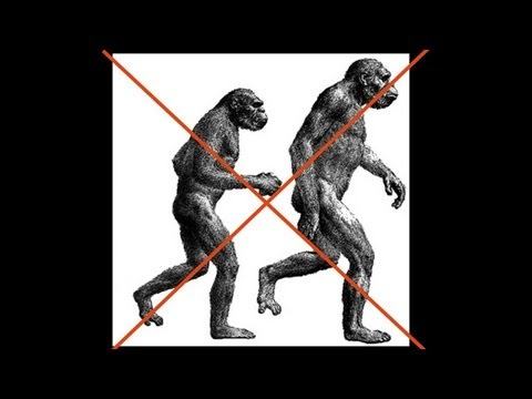 CARTA: The Upright Ape: Bipedalism and Human Origins -- Carol Ward: Early Hominin Body Form