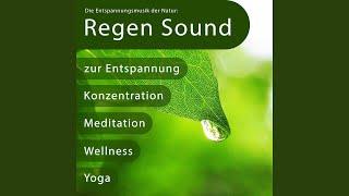 Die Entspannungsmusik der Natur: Regen Sound zur Entspannung, Konzentration, Meditation,...