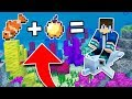 How To RIDE DOLPHINS In Minecraft TUTORIAL! (Pocket Edition, Xbox, PC)