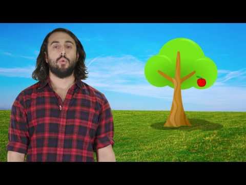 Kinematics Part 2: Vertical Motion