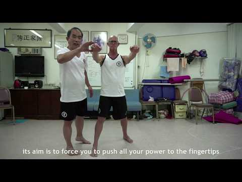 Master Hang Ng: Chow Gar Tong Long - Kung Fu Masters in HK Exclusive Interview