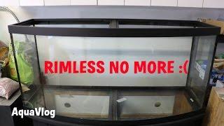 More Progress, PAR METER✔ RIMLESS NO MORE :/