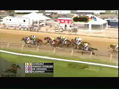 Preakness Stakes 2011 - Shackleford