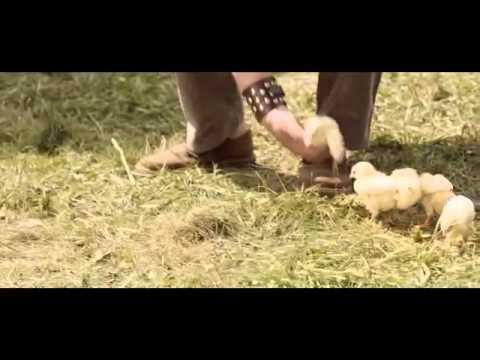 Farm parking😮😮🐤🐤🐶