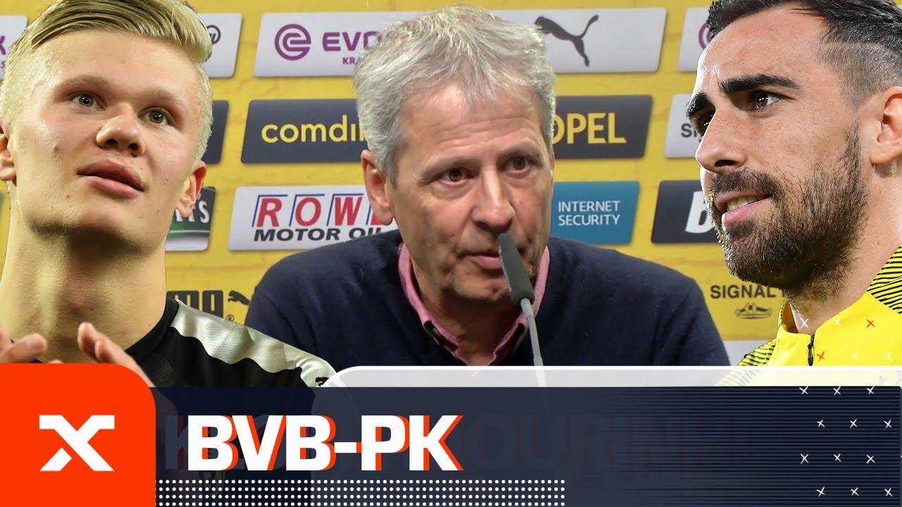 """Bringt viel Freude"": Lucien Favre lobt Erling Haaland | Borussia Dortmund | Bundesliga | SPOX"