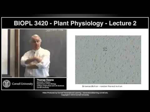 BIOPL3420 - Plant Physiology - Lecture 2