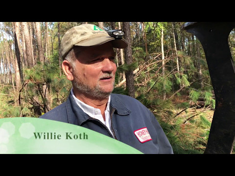 Honey Hill Timber Company Logging Spring Island