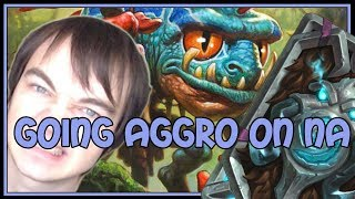Hearthstone: Going aggro on NA (aggro paladin)