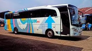 luxury bus zentrum new rn 825