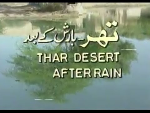 Thar After Rain produced by PTV producer Nazimuddin for Pakistan Television