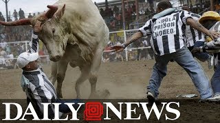13-year-old girl raped by inmate at controversial Angola Prison Rodeo in Louisiana: report