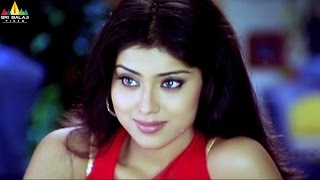 Shriya Saran Scenes Back to Back   Telugu Movie Scenes   Sri Balaji Video