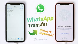 How to Transfer WhatsApp from old iPhone to iPhone 12 (2020)