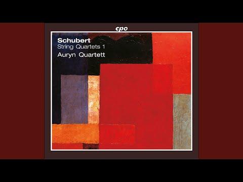 String Quartet No. 7 in D Major, D. 94: IV. Presto
