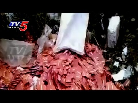 Lakhs of ICICI Bank Cards Thrown in Nellore Outskirts | TV5 News