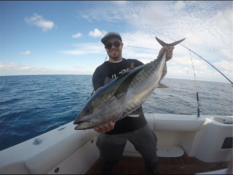 Tuna Fishing in San Diego, Turkey Week