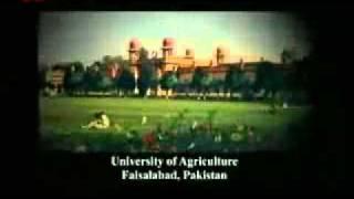 Biography of Hadhrat Mirza Masroor Ahmad 1-7