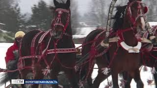 День коня отметили в Вологодском районе
