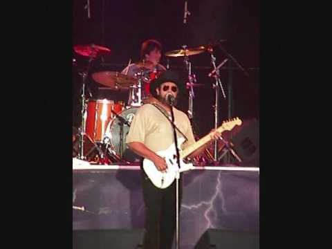 Hank Williams Jr  House Of The Rising Sun