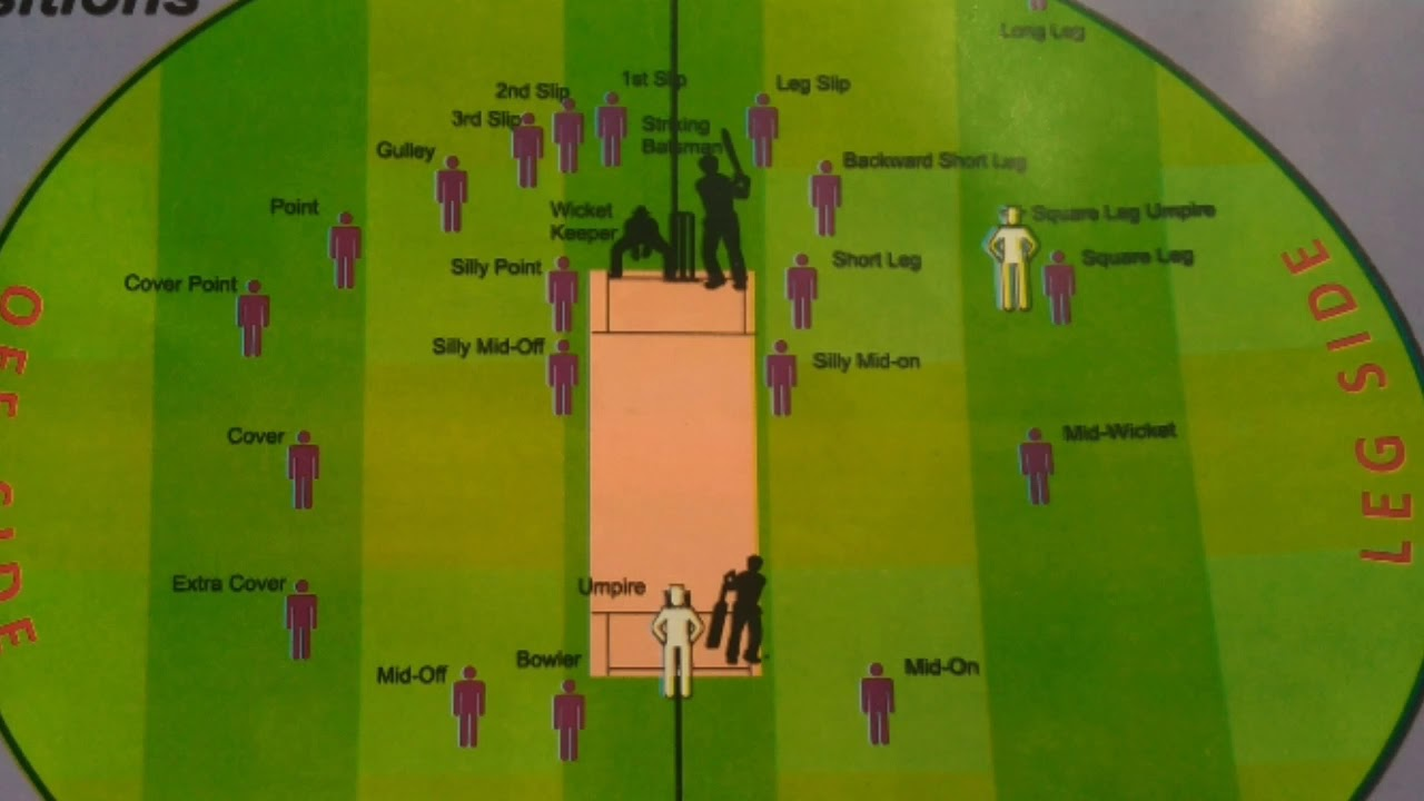 hight resolution of different positions in cricket field