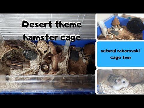 DESERT THEME HAMSTER CAGE || ROBOROVSKI CAGE SET UP 🌿🌿