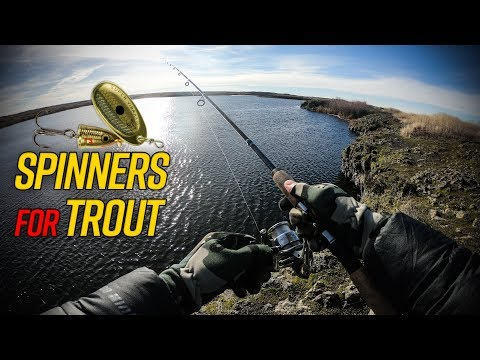 Washington Winter Trout Fishing With Spinners (Catch & Cook!)