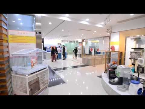 PetZoo Mega Pet Store Shanghai - Everything you need for your pet