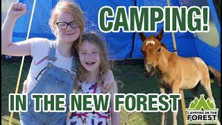 Camping In The New Forest At Roundhill Campsite Brockenhust