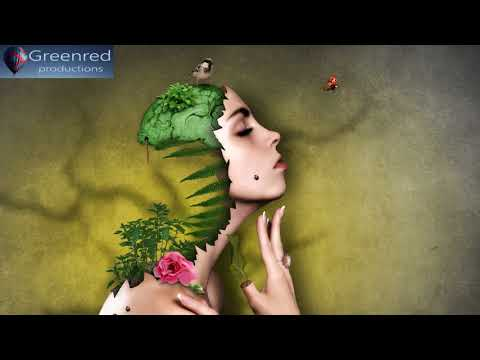 Super Intelligence: Memory Music, Improve Memory and Concentration, Binaural Beats Focus Music