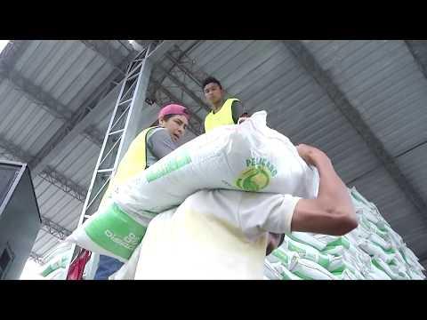 Presidente de la República supervisa inicio de entrega de paquetes agrícolas @alejandra_TCS