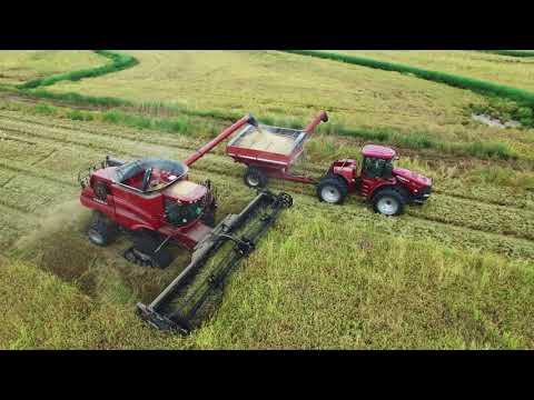 Louisiana Rice Harvest 2018 4K Drone Video