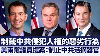 美兩黨議員提案:制止中共活摘器官 @新唐人亞太電視台NTDAPTV  20201221 - YouTube