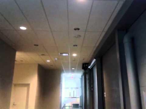 Fire Alarm Sound With Strobe Youtube