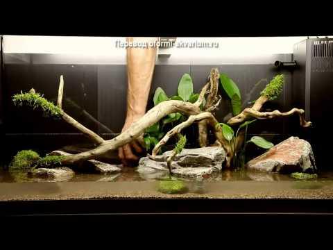 Дизайн аквариума на 180 литров от Tropica