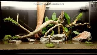 видео Аквариумы 180 литров