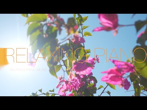 Relaxing Piano Music 🍀 Soft Piano Music 🍀 Piano Music For Stress Relief  🍀 Meditation Piano Music