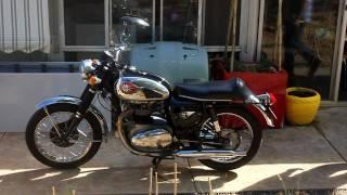 1967 bsa a65 thunderbolt