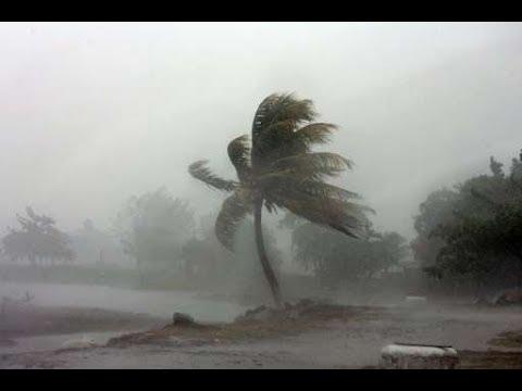 How to Survive Hurricane Irma