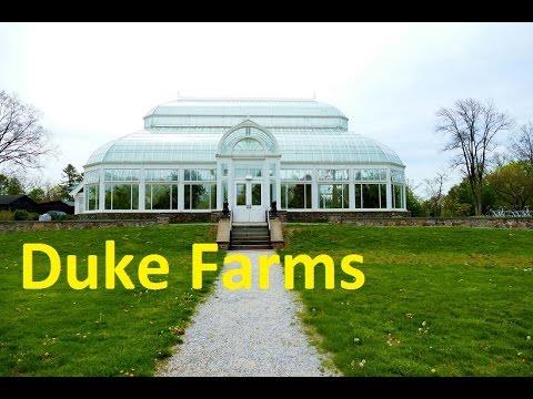 Duke Farms, NJ. Spring 2016